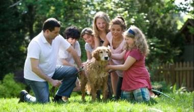 Роль сім'ї у становленні особистості в юнацькому віці